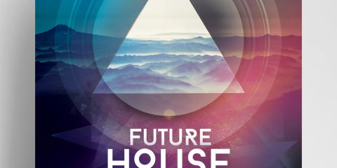 Future House Geometric PSD Free Flyer