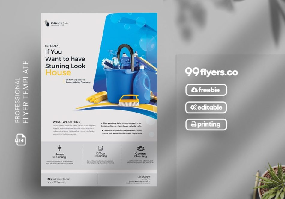 Free Cleaning Service Flyer Template in PSD